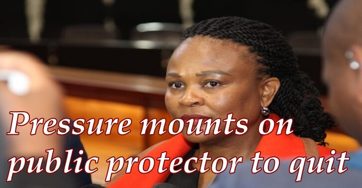 Pressure mounts on public protector to quit